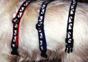 white terrier collar - 3 colors